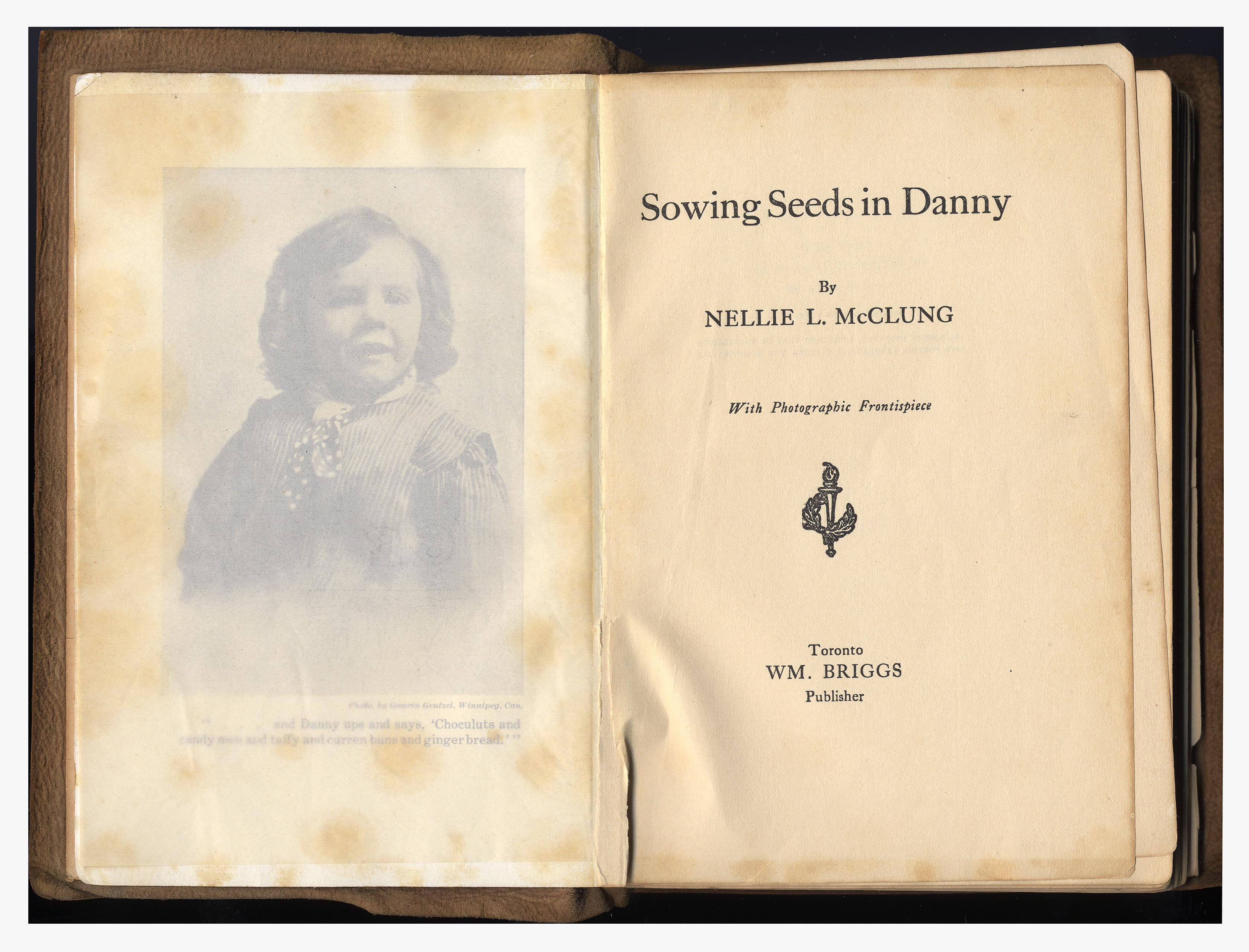 essays about nellie mcclung Faulkner essay i wish i were able to trace all my ideas if my ignoranceprevents me from describing them properly, i hope i shall be able todelineate a few of the.
